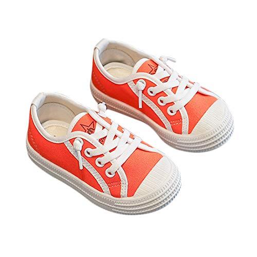 DEBAIJIA Niñas Niños Zapatos 2-7 Años Zapatillas de Deporte Lona Dulce Casual Suave Doble Suela de Moda Antideslizantes Transpirables Al Aire Libre Ligeros para Estudiantes de Primaria