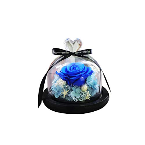 WINOMO Everlasting Flower Glass Cover Immortalized Flower Never marchita Rose Flower para Novia Amante de la Novia Aniversario de Bodas Presente de cumpleaños (Azul)