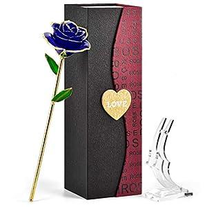 FORGIFTING Rosa Sant Jordi, Resina preservada y Rosas bañadas en Oro – Regalo para Ella en el día de San Valentín, Día…