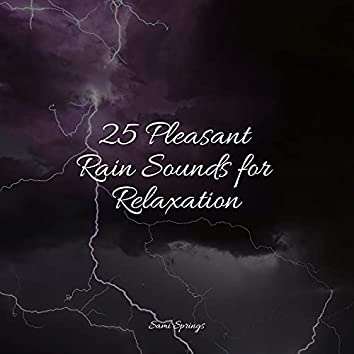 25 Pleasant Rain Sounds for Relaxation