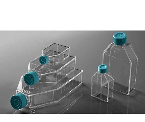 Sterilized Cell Culture Flasks - 250ml, 75cm2, Vent Cap, 5/pk