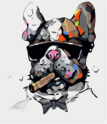 LSDEERE schilderen op nummer, jongens, nachtlampje, doe-het-zelf kits tekeningkleuren volwassenen acrylverf handgeschilderd modern schilderij decoratief kunstwerk kamer geschenk frameless 40X50cm