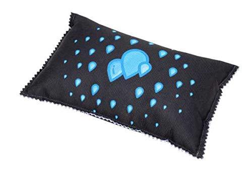 WENKO Auto-Entfeuchter-Kissen mit Sättigungsanzeige, wiederverwendbar, hilft bei beschlagenen Autoscheiben und schützt vor unangenehmen Gerüchen, mit 1000 g Entfeuchter Granulat, 23 x 5 x 15 cm
