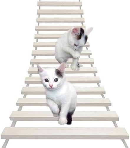 Cat rope bridge _image2