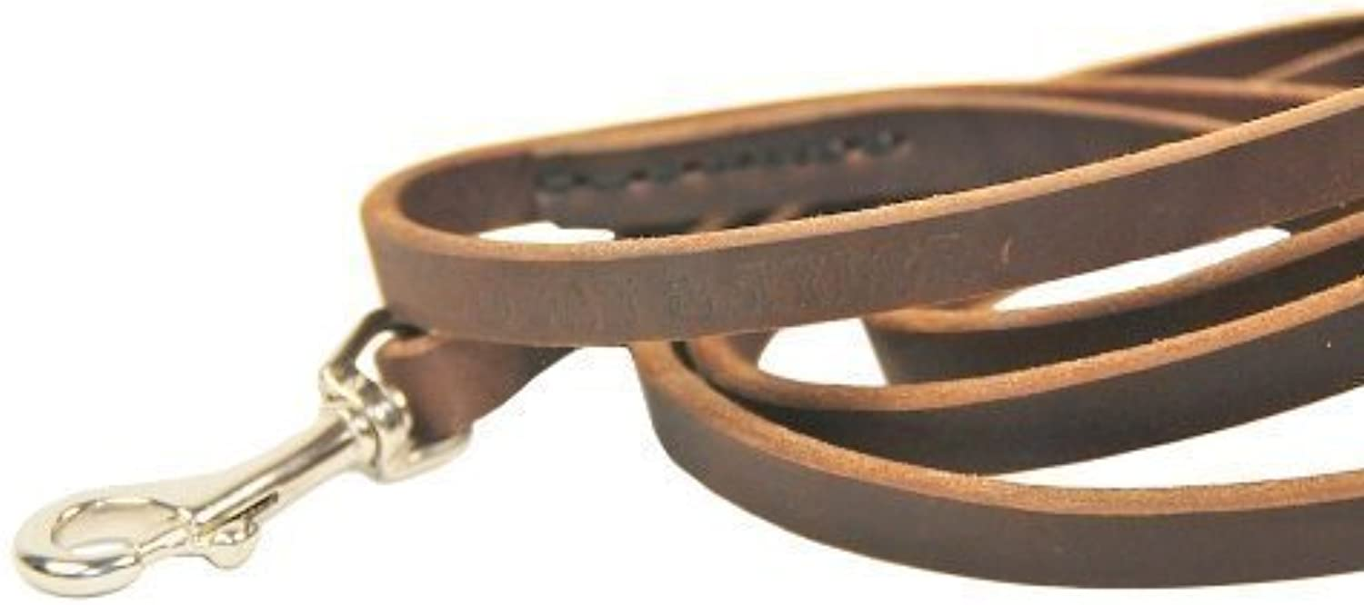 Dean and Tyler No Nonsense Leather Leash, Brown 2Feet by 1 2Inch Width With Stainless Steel Hardware.