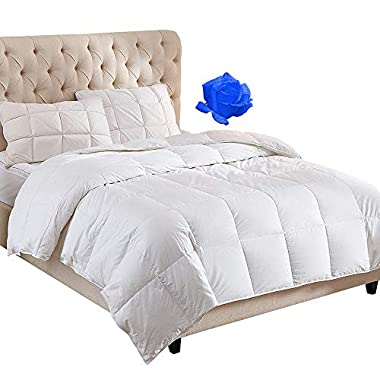 WhatsBedding 100% Cotton Down Comforter White Goose Duck Down and Feather Filling,Hypoallergenic. All Season Duvet Insert or Stand-Alone Comforter (King)