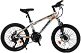 BANANAJOY Niños bicicletas for niños bicicletas de 20 pulgadas de velocidad variable bicicleta al aire libre Montañismo Amortiguador de bicicletas de montaña de aluminio Estudiante de bicicletas (Colo