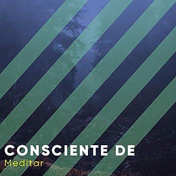 Consciente de Meditar, Vol. 1