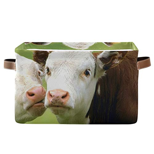 REFFW Paquete de 2 contenedores de Almacenamiento de Tela Plegable para el hogar, Cesta de Cubo para el Armario del hogar, cajones de Dormitorio, organizadores, Vacas domésticas, Animales