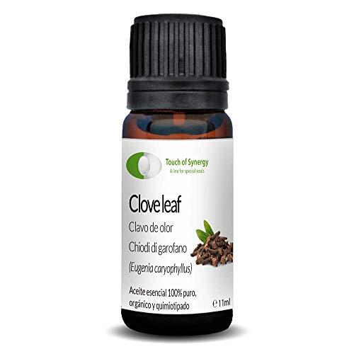 Etherische olie van kruidnagels, geur (Eugenia Caryophyllus), 100% puur, organisch en chimiotiseerd, 10 ml
