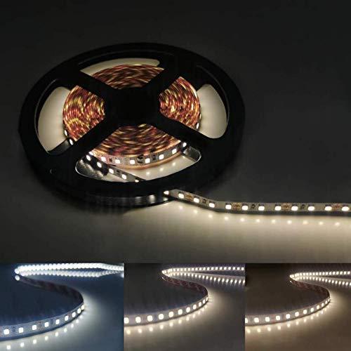 Ruban LED 12V 5M 2835 IP20 120LED/m - Blanc Froid 6000K - 8000K - SILAMP