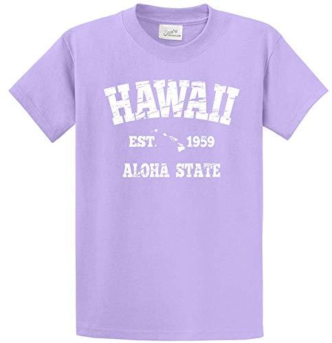 Joe's USA - Vintage Hawaiian Islands T-Shirts in Size L Lavender