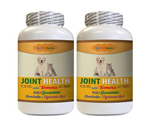 Hip and Joint Soft Chews for Dogs - Pets Best Turmeric for Joint Health - for Dogs and Cats - Premium Joint Support - Turmeric for Dogs Chews - 120 Treats (2 Bottles)