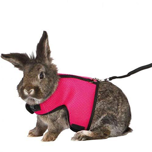 Verstellbares Weiches Kaninchen Geschirr Mit Leine FüR Kaninchen Katzengeschirr Softgeschirr Hasenkleidung FüR Kleines Chinchillas,Hamster,Meerschweinchen Weich Bequem (Vorschlagen:Groß Eine Größe)