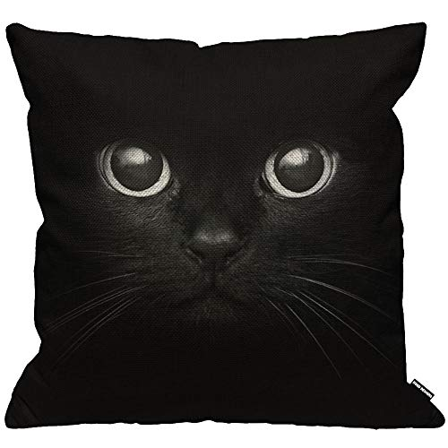 HGOD DESIGNS Cushion Cover Black Cat Show Two Eyes Throw Pillow Cover Home Decorative for Men/Women/Boys/Girls living room Bedroom Sofa Chair 18X18 Inch Pillowcase