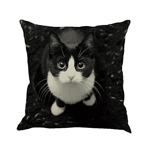 Janly Clearance Sale Pillowcase , Cat Square Pillowcase Home Decoration Car Sofa Bedroom Cushion Cover , Home & Garden (G)