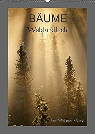 BÄUME (Wandkalender 2020 DIN A2 hoch): Wald und Licht (Monatskalender, 14 Seiten )