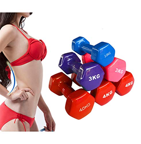 Dumbbells Kit, Neoprene Dumbbells Hand Weights Dumbells | for Home-Gym-Exercise-Fitness-Training-Weight Lifting-Body Building-Muscle Toning-Pilates (1Pair),0.5kg