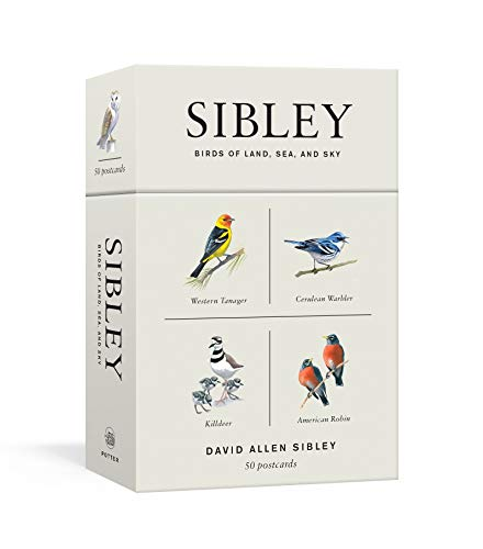 Sibley Birds of Land, Sea, and Sky: 50 Postcards