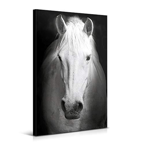 Cuadros Modernos de Animales de Decoración para Salón y Dormitorio - Caballo, 60 x 90 cm - Lienzo de Poliéster y Bastidor de Madera, Color Blanco y Negro, LEN-032