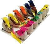 Set of 12 pcs Colourful material Artificial Birds