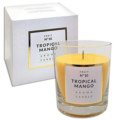 250 g Duftkerze im Glas | 12 Düfte | Duftwachs Kerze mit 114 Std. Brenndauer in edler Geschenkverpackung (Tropical Mango N°10)