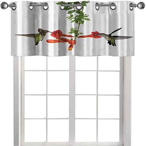 Cortinas opacas con cenefas de ventana pequeñas, dos colibríes beben néctar de una trompeta Vine Blossoms verano 42' x 18' elegantes cortinas cenefa para cocina