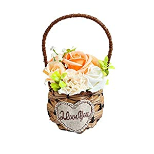 Carnation Rose Soap Flowers with Basket Artificial Body Soap Plant Essential Oil Scented Soap Rose Carnation Decoration Ideas Gift for Mother's Day,Anniversary,Weddings,Birthdays Mom-Champagne