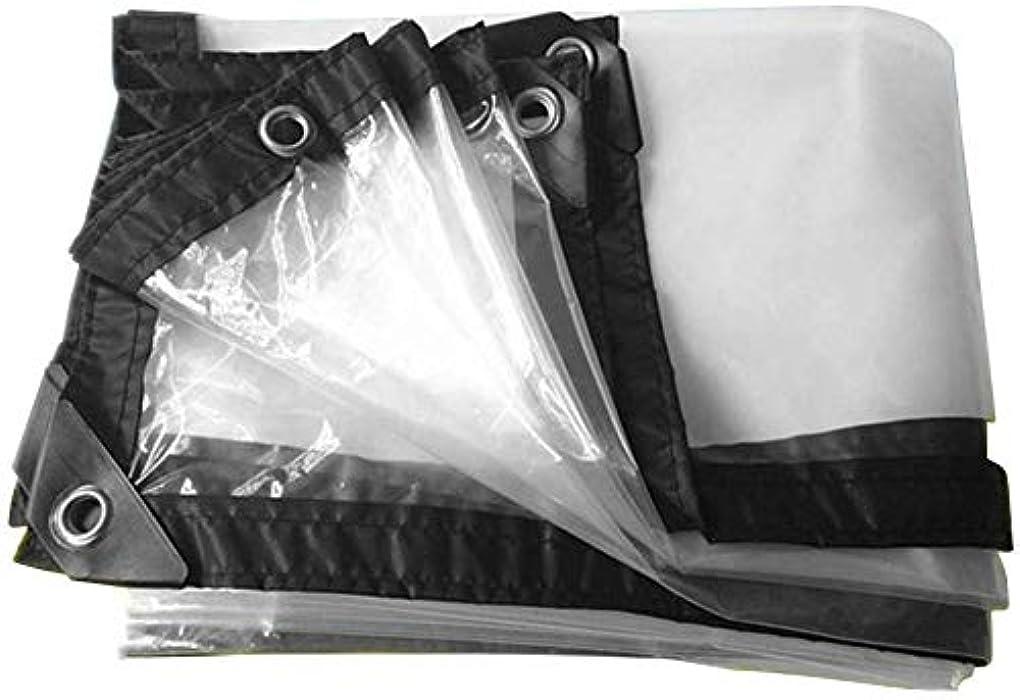 炎上好き仮装ポルチレンPE透明防雨布農業用温室フィルム両面防水ターポリン。 (サイズ:2 3m)