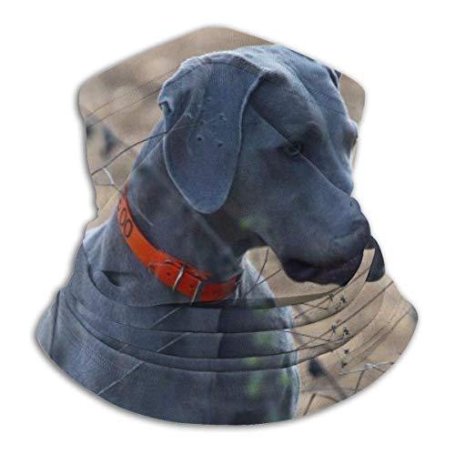 ShiHaiYunBai Tour de Cou Cagoule Microfibre Chapeaux Tube Masque Visage, Dog Soft Fleece Neck Warmer Gaiter Face Mask Cover For Cold Weather