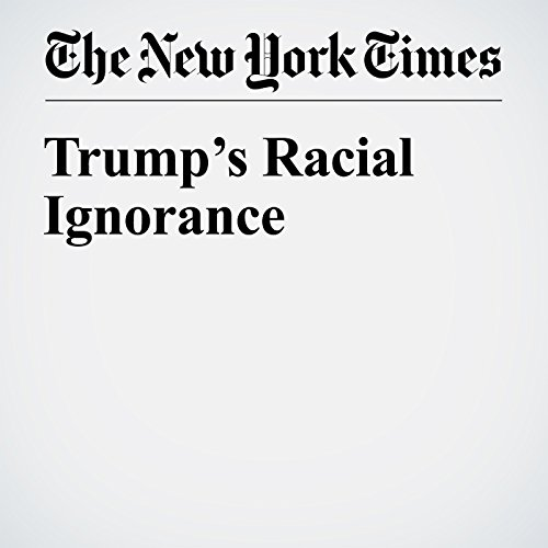 Trump's Racial Ignorance audiobook cover art