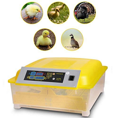 Incubadora Automática de 48 Huevos Incubadora Digital Inteligente de con Pantalla de Temperatura y Humedad, Control de Temperatura y Rotación Automática de Huevos