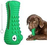 Silverwing Hunde-Kauspielzeug, langlebiges Hundespielzeug für aggressive Kauer, Hundezahnbürste,...