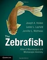 The Zebrafish: Atlas of Macroscopic and Microscopic Anatomy