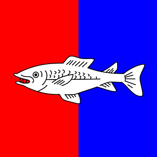 ... perché la prima impressione conta Bandiera: CHE Nyon | Swiss city Nyon | Miasta Nyon w Szwajcarii per scopi rappresentativi 0.06m² | 25x25cm Bandiera adatta per le bandiere Diplomat per auto