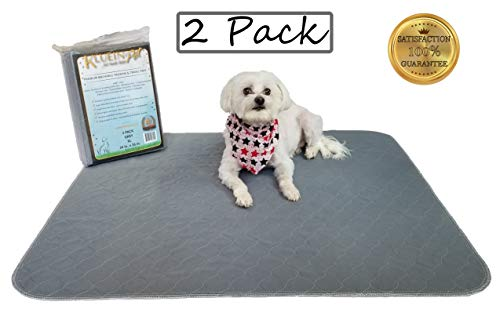 Kluein Pet Washable Pee Pads for Dogs, 2 Pack XL 34 x 36, Grey, Reusable Puppy Pads, Fast Absorbing Wee Mat; for Playpen, Housebreaking, Indoor Potty Training, Whelping, Incontinence, Travel