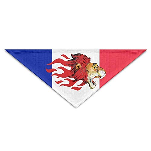 hgdfhfgd Lion Head Cool Triangle Pet Scarf Dog Bandana Pet Collars Perro Gato - Cumpleaños