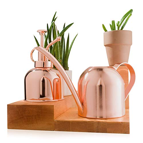 HOMJARDI Copper Watering Can with Bonus Mister Spray for Indoor and Outdoor Plants | Modern Rose Gold Mister Spray for Flower, Succulent, Bonsai | Decorative Stainless Steel Can 15oz/450ml.