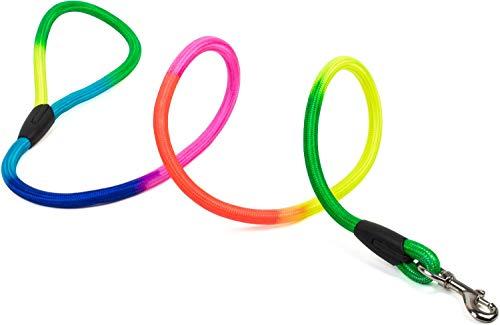 Puccybell Hundeleine geflochten in Regenbogen Neon Farben (1,2m), Nylon Rainbow Color Leine für kleine, mittelgroße und große Hunde, Führleine LE001 (M, bunt)