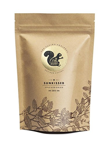 The Flying Squirrel Coffee Sunkissed Roasted Whole Coffee Beans, 250g