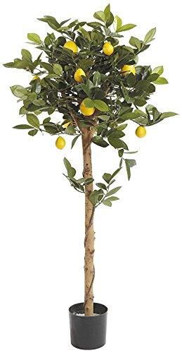 Fiebiger Zitronenbaum Kunstpflanze
