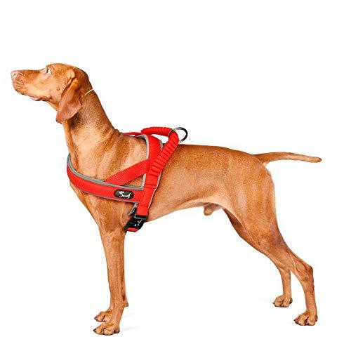 PETTOM Pettorina Cane Confortevole Morbida Dog Harness per Cani Piccolo Media Grande Riflettente Regolabile con Manico Bungee per Passeggio Addestramento Viaggio Facile da Indossare (Rosso, S)