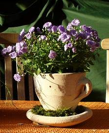 2. Wahl !! Aktion !! Tasse 22 cm , echt Terracotta ohne Deko !! Terrakotta Garten Deko Blumentopf Pflanztopf Übertopf