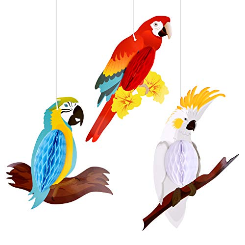 TUPARKA 6 Pieces Tropical Birds Honeycomb Parrot Hawaiian Summer Beach Tiki Bar Luau Party Home Classroom Hanging Decorations(Parrot)