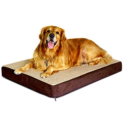 Floppy Dawg Large Orthopedic Dog Bed with Removable Cover and Waterproof Liner. 4 Inch Solid Foam Base Features Gel Memory Foam Top Layer. Review