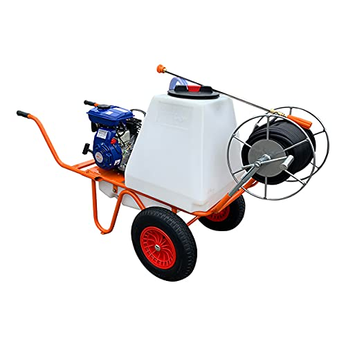 Bricoferr BF045100502 Carretilla Sulfatadora con Motor a Gasolina 4 Tiempos y Capacidad...