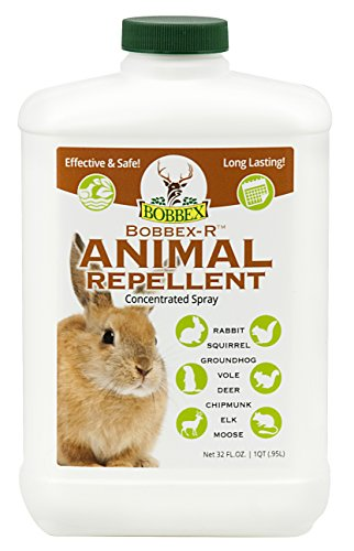 Concentrated Animal Repellent - Bobbex | Ready-To-Use Outdoor Rabbit, Squirrel, and Chipmunk Repeller Concentrate (32 oz.) B550120