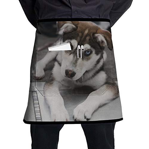 Dingl De Husky Hond Leg Op Het Tapijt In De buurt Van De Trappen 1 Stuk Verstelbare Halflange Schort Pocket Voor Mannen En Vrouwen In Koken, Barbecue En Bakken