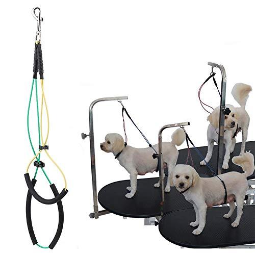 HEEPDD Cuerda de Aseo para Mascotas, 17.7 in / 21.7 in Soporte de Cadera No-Sit Doble Aseo para Alambre de Acero Inoxidable Sujeción de Cuerda de Seguridad SOGA para la preparación de Mascotas(S)