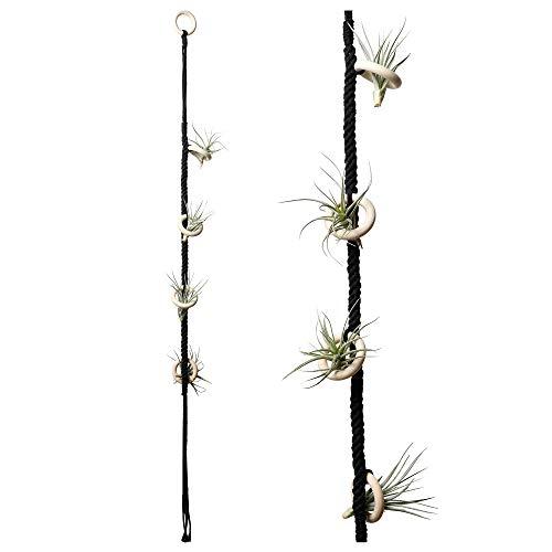 POTEY 602102 - Soporte para plantas colgantes de aire para 4 plantas de aire para colgar Tillandsia, hecho a mano, cuerda de algodón, para decoración del hogar, 1 paquete de 40 pulgadas, color negro